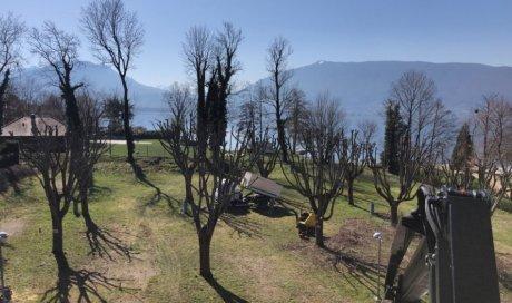 Élagage et taille d'arbres paysagiste à Menthon-Saint-Bernard - Eco Services