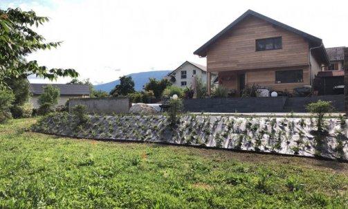 Plantation de végétaux à Aix-les-bains