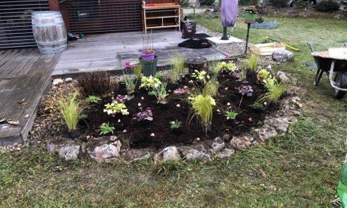 Création de massif vivaces et bulbes à La balmes de sillingy