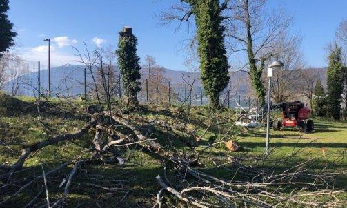 Evacuation de bois à Annecy