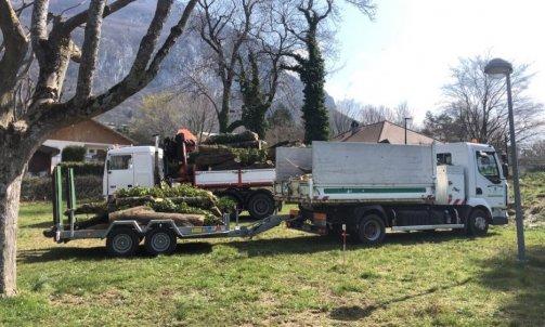 Evacuation d'arbre à Annecy