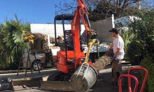 Plantation d'arbre à Villaz